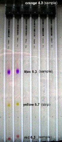 acidic amphoteric colours in the sample